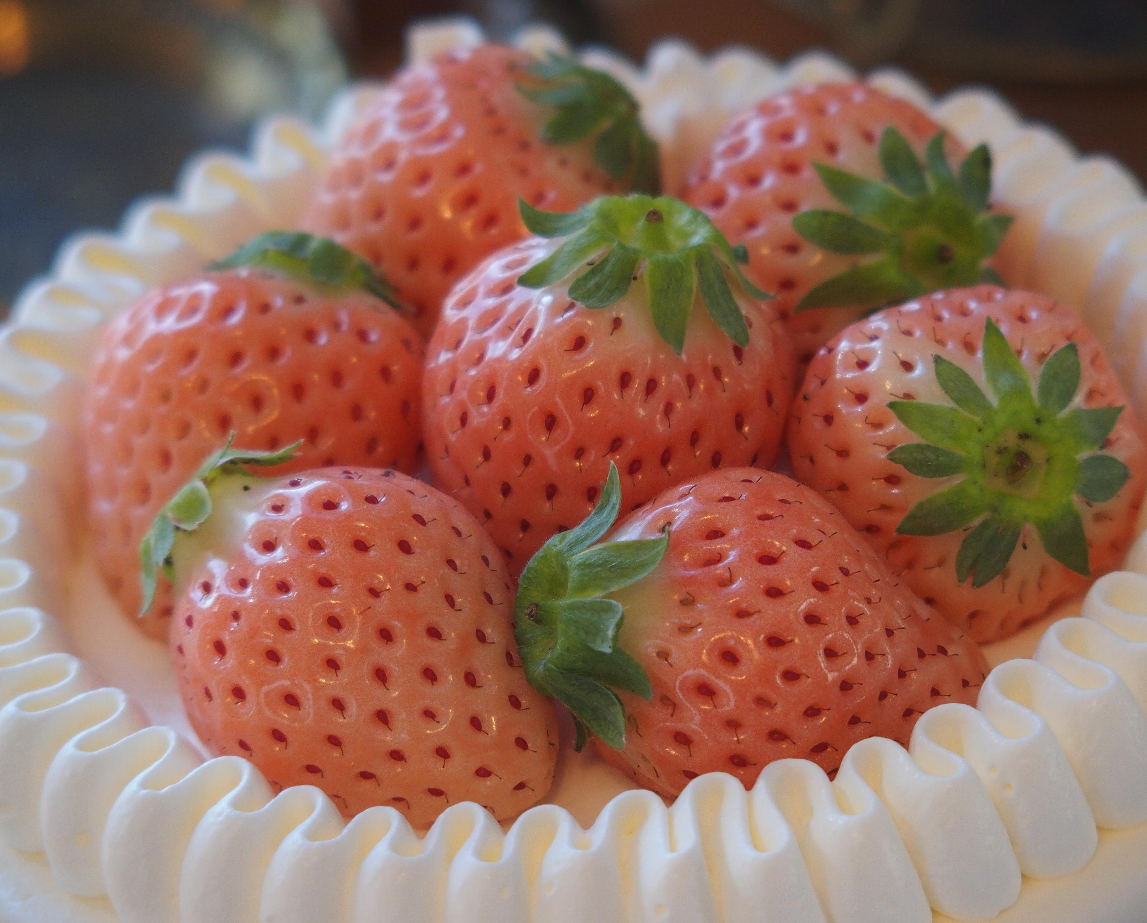ホールケーキのご注文方法