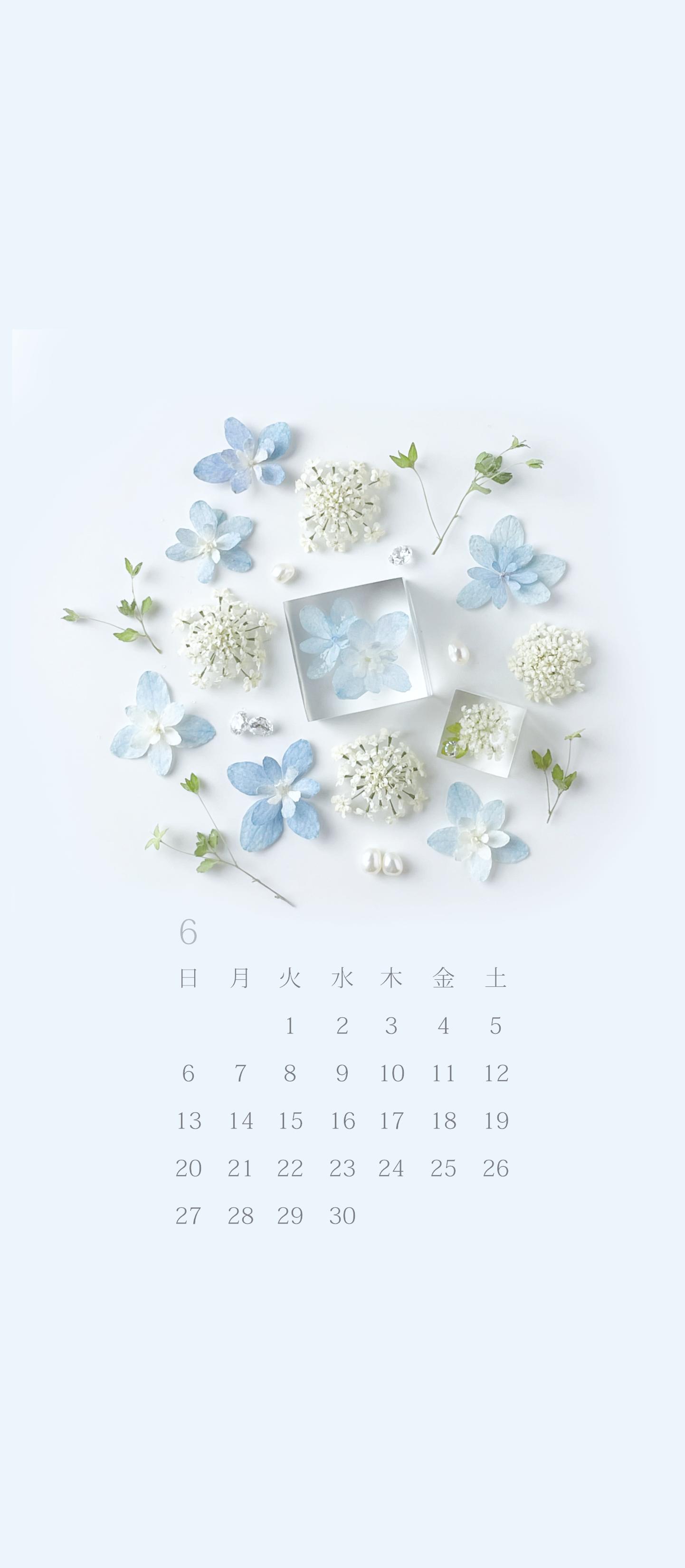 無料ロック画面カレンダー 「6月 紫陽花とレースフラワー」