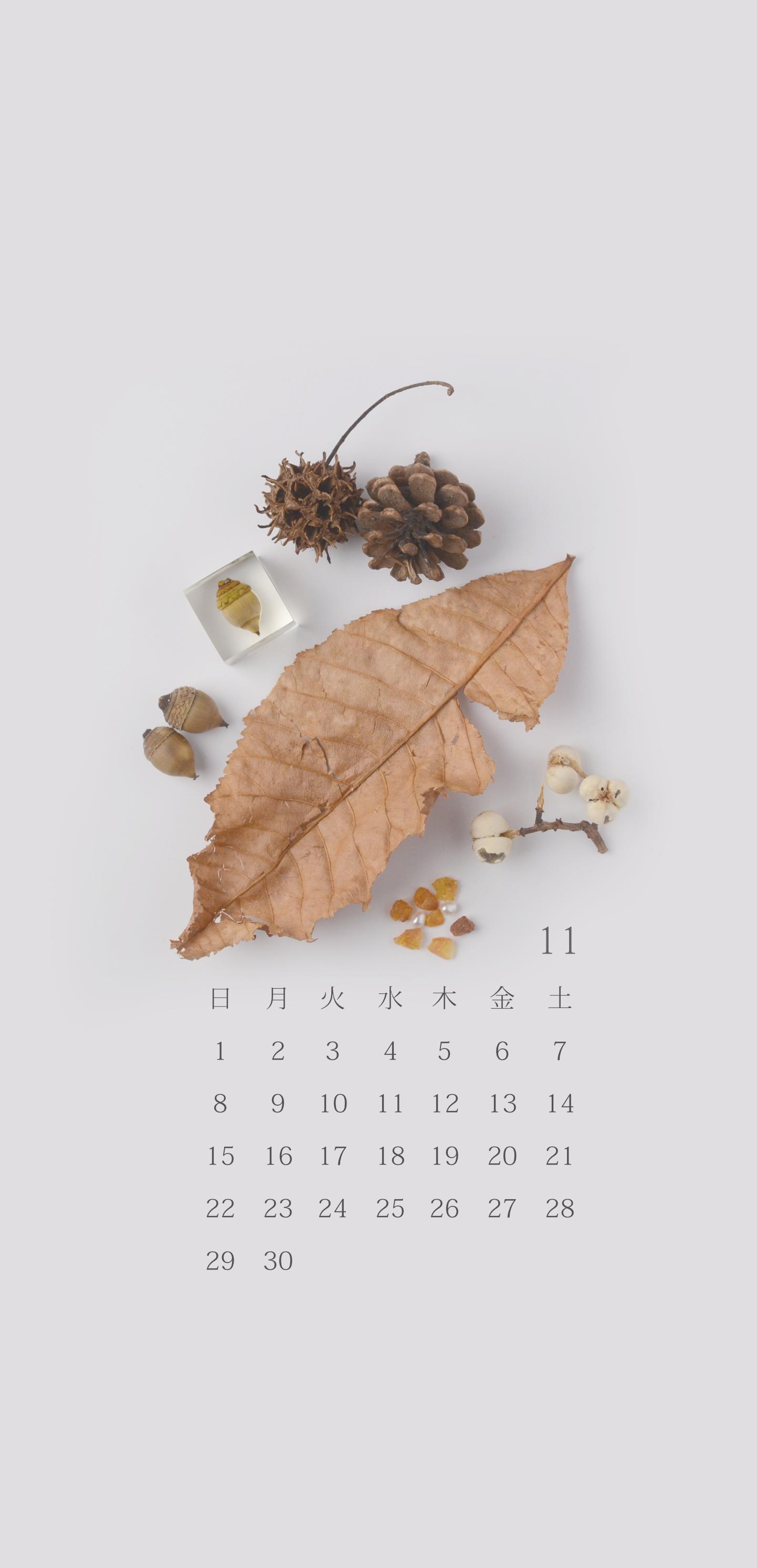 無料ロック画面カレンダー 「11月 どんぐりと秋の景色」