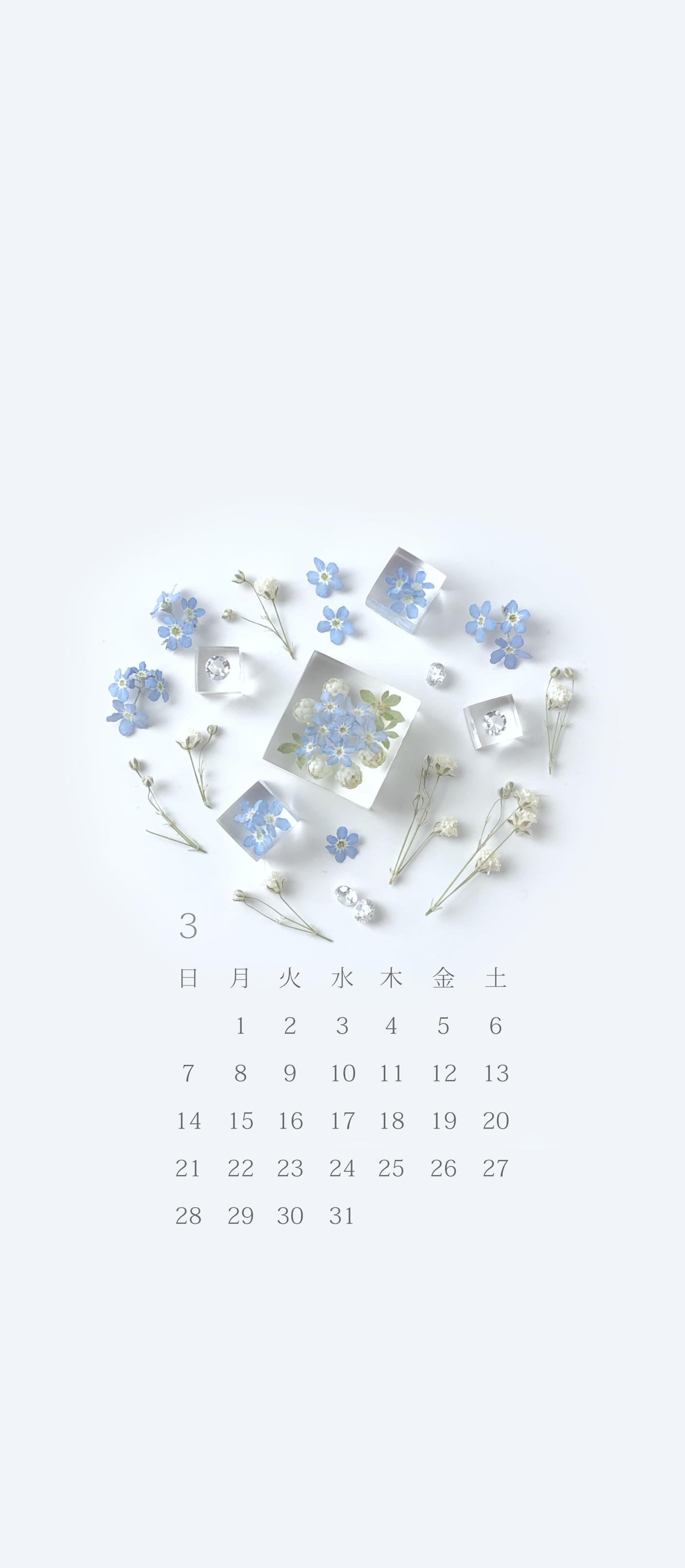 無料ロック画面カレンダー 「3月 春の野 - 勿忘草」