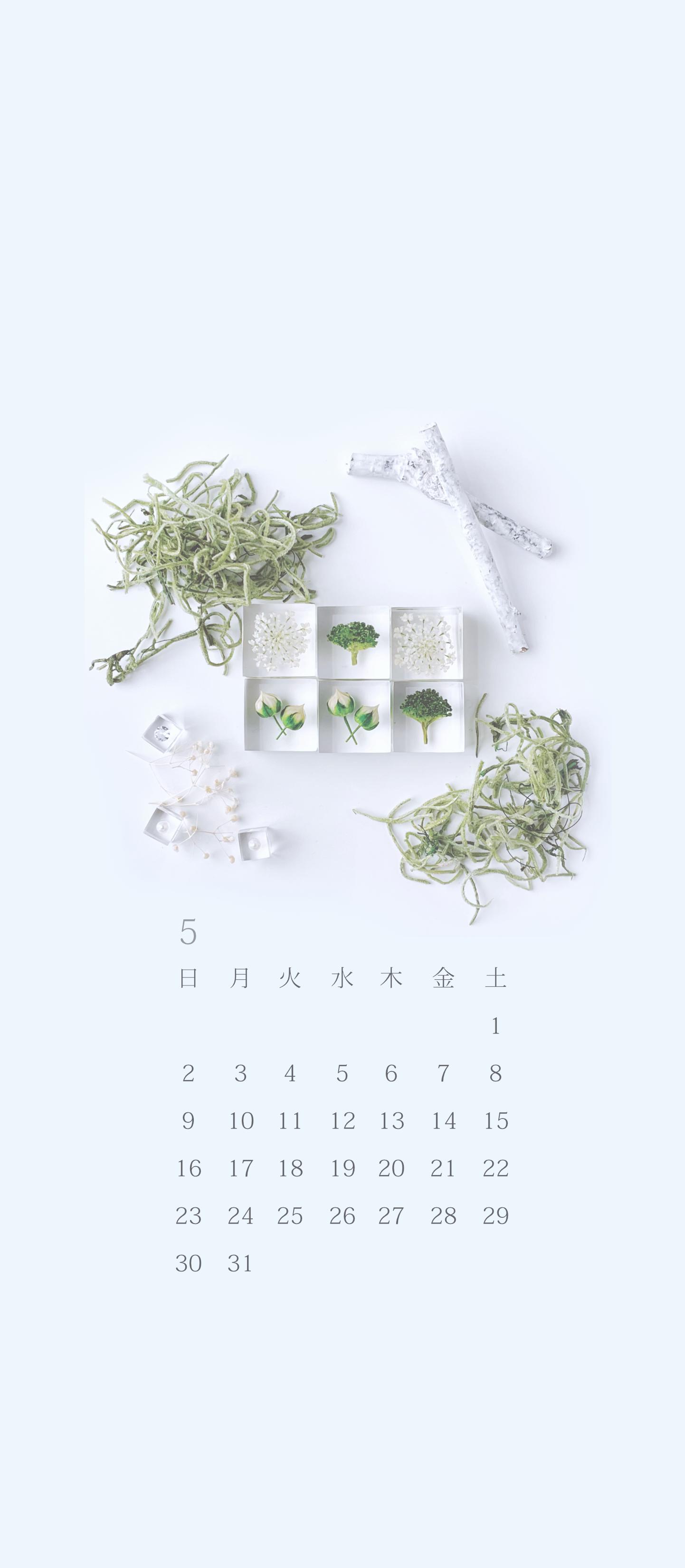 無料ロック画面カレンダー 「5月 新緑のワンプレート」