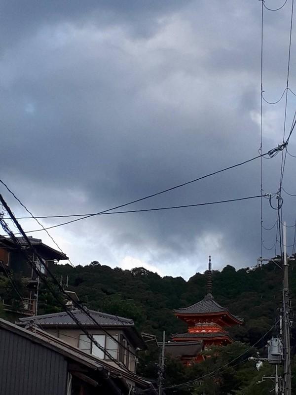 【茶わん坂】風の強い日