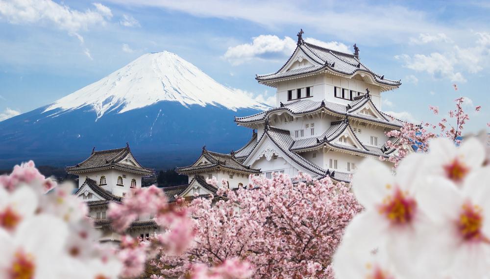 日本のお土産 おすすめランキング