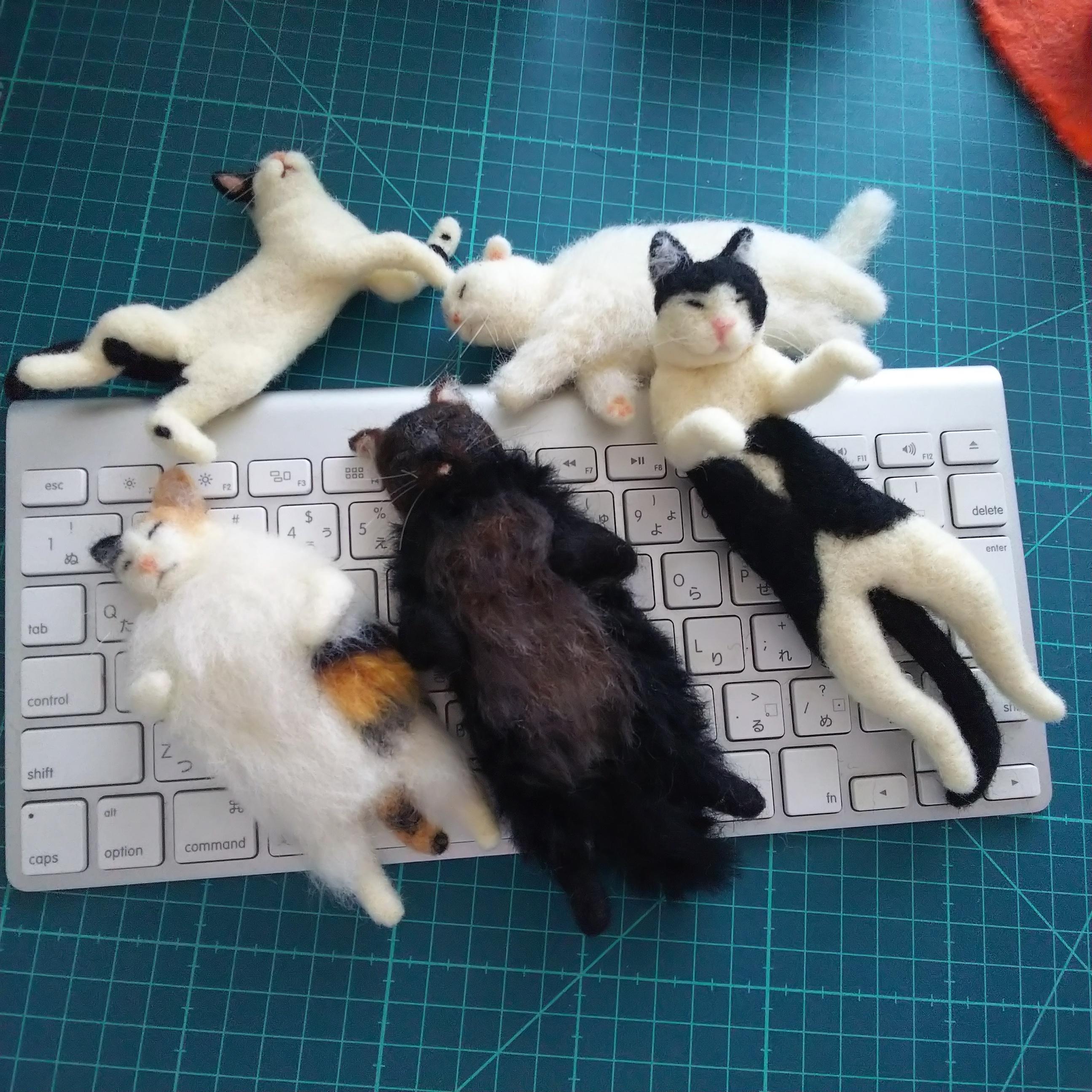 猫全員集合