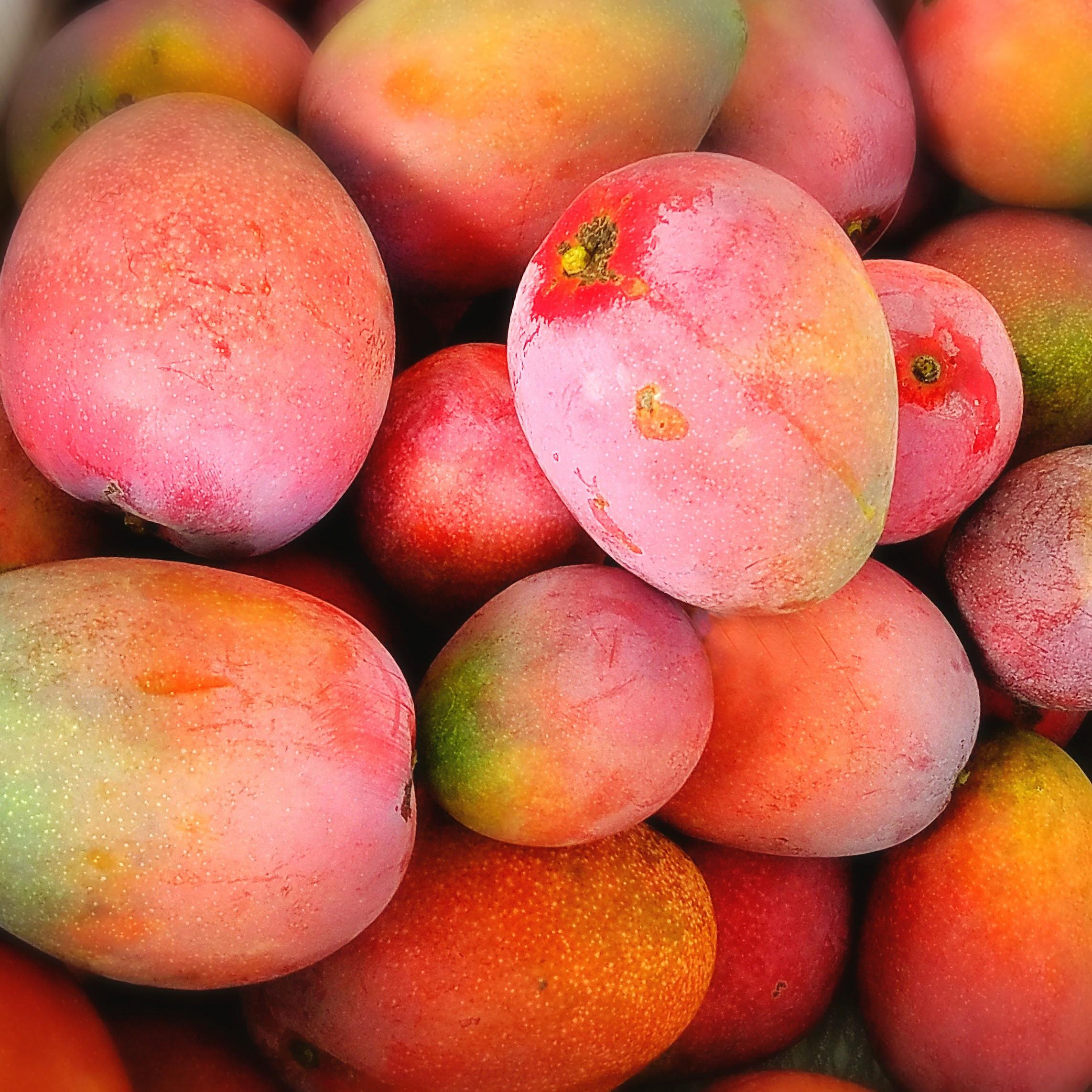 おきなわの果物
