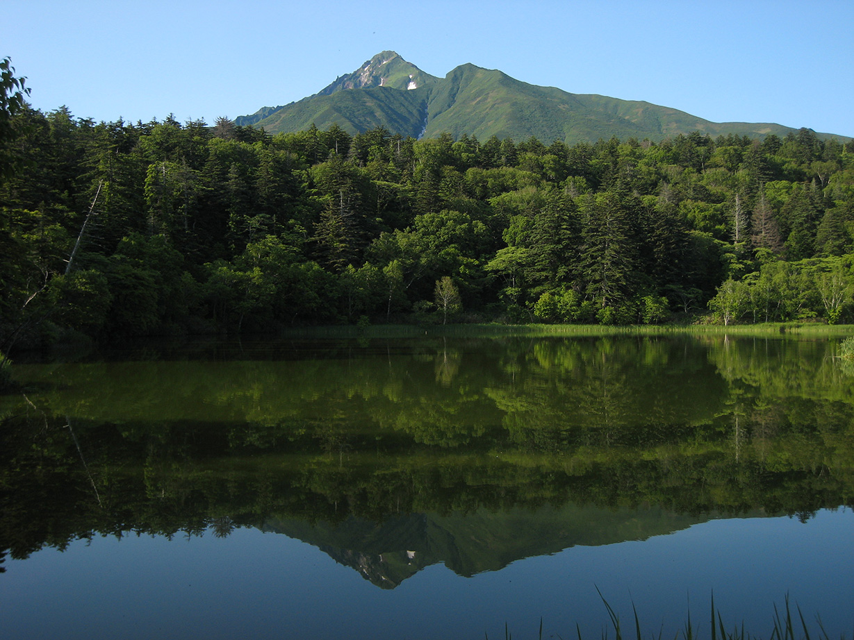 【利尻観光】美しい逆さ富士を見に姫沼へ。ちょっと早起きしてのお出かけがおすすめです