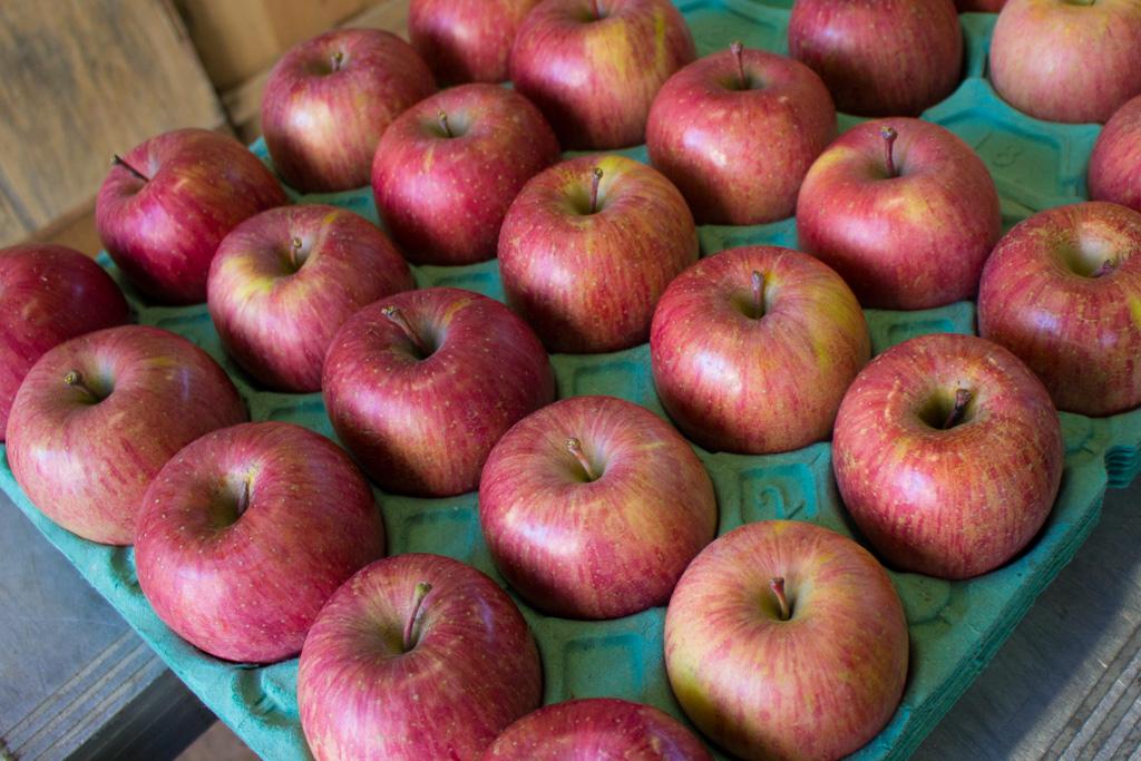 りんごが旅立つ前に 〜いっちゃん林檎農園の現場から〜