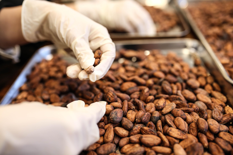 インターナショナルチョコレートアワード銅賞のチョコレート