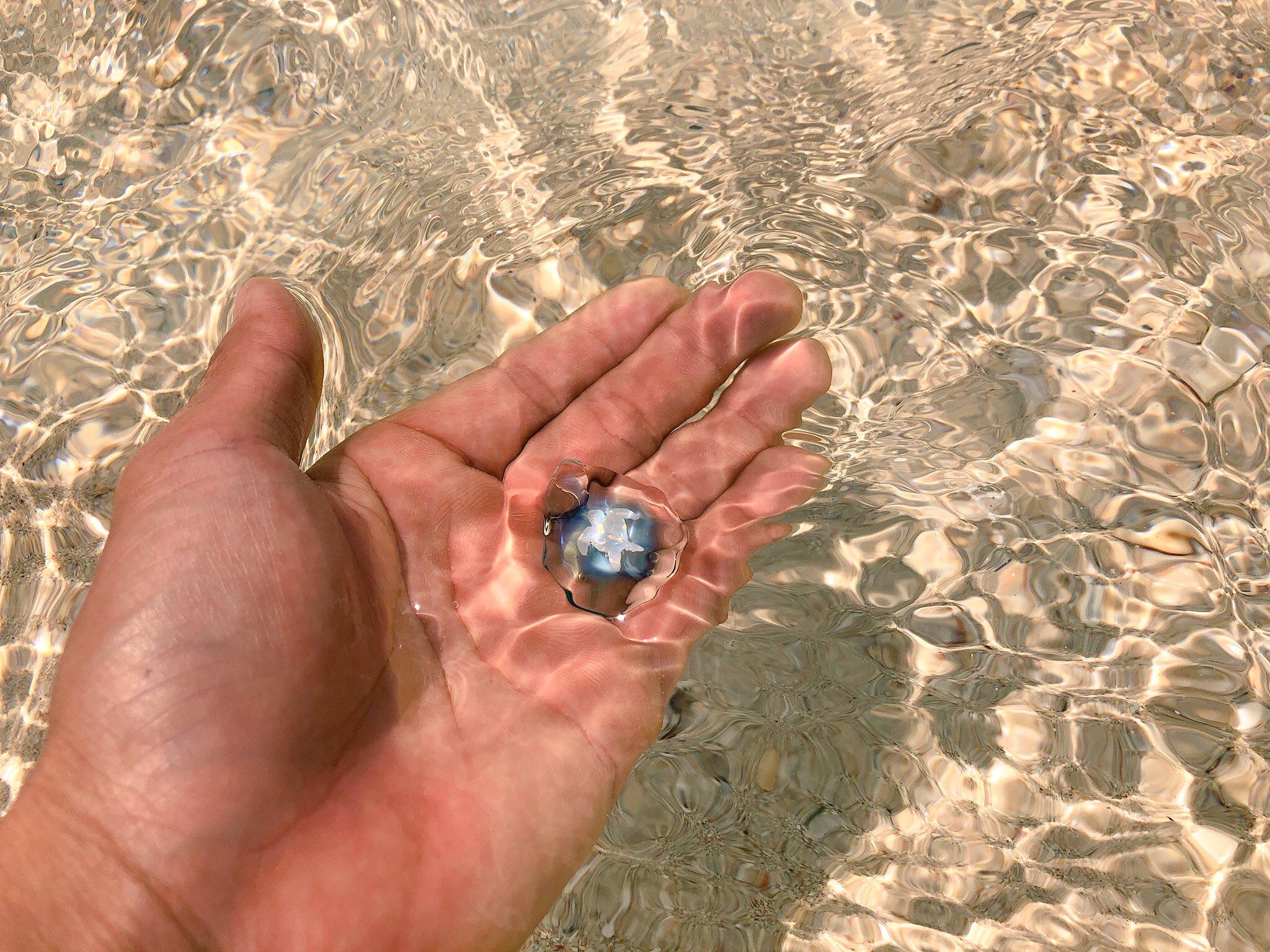 ウミノカケラを海へ