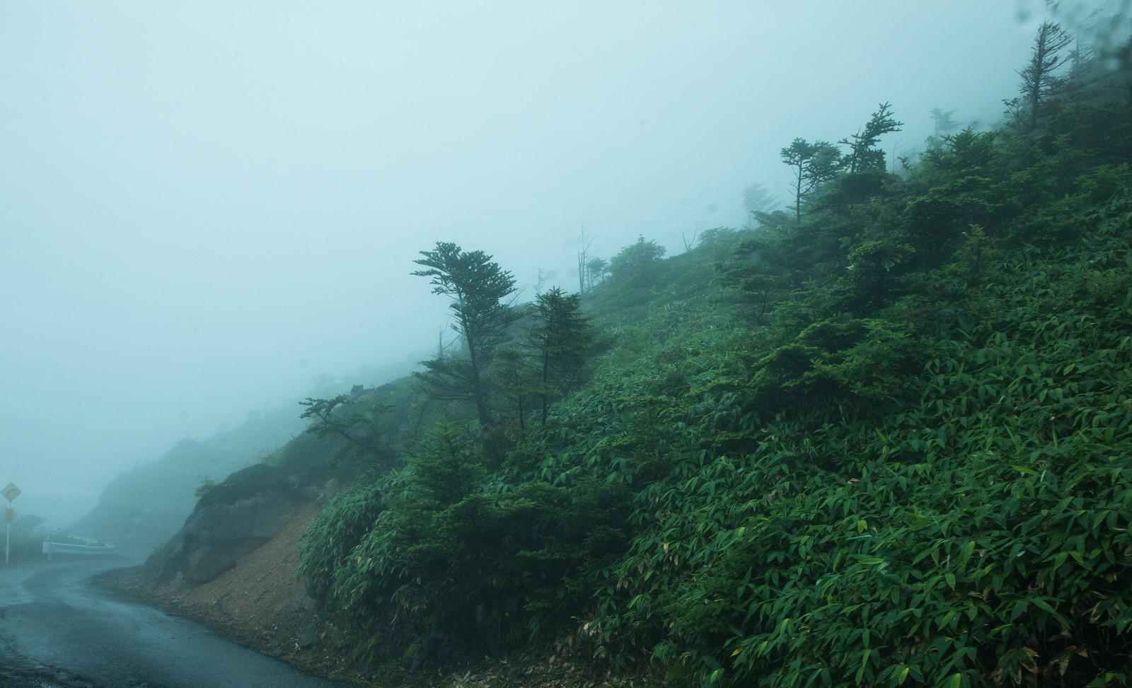 【お知らせ】西日本の豪雨被害に伴う配送の遅延について