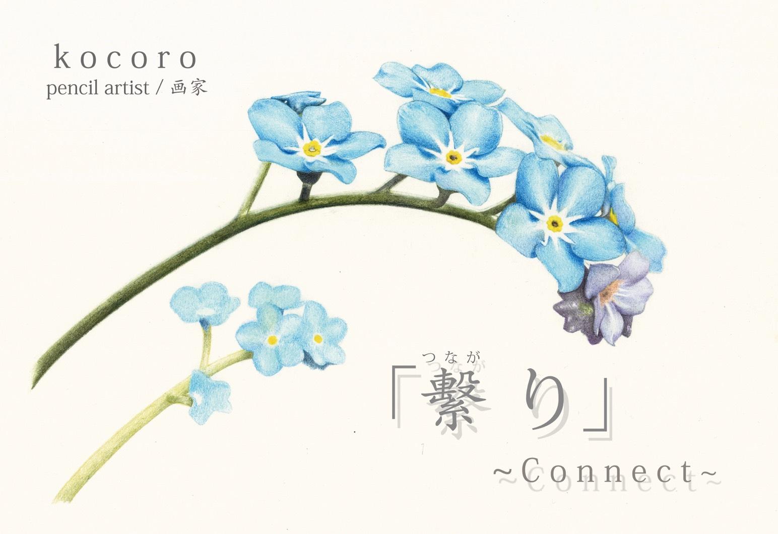 【入場無料】kocoro個展「「繫り」~Connect~」8月1日(水)より開催