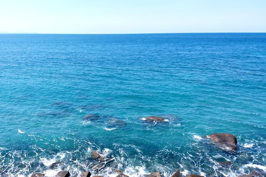 【4月おすすめ】春海の恵みたっぷり干あおさ
