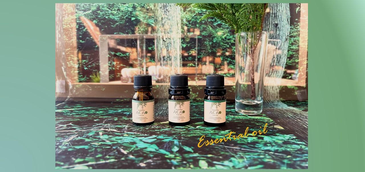 『六月八日』森の香りのエッセンシャルオイルを使ってみよう!