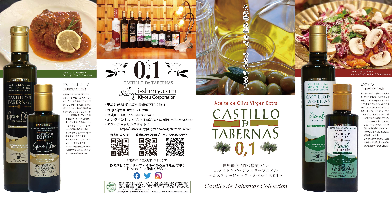 【お知らせ】カスティージョ・デ・タベルナス0.1新規パンフレットが出来上がりました。