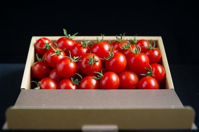 超トマト販売開始のお知らせ