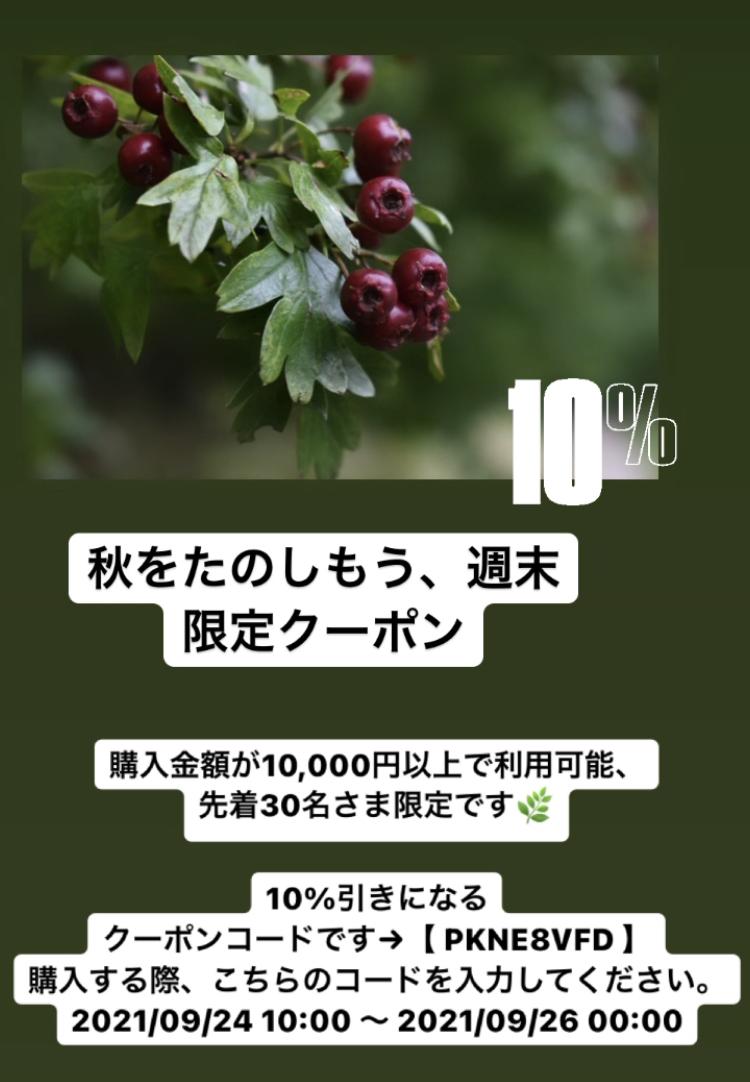 秋を楽しむ10%オフクーポン