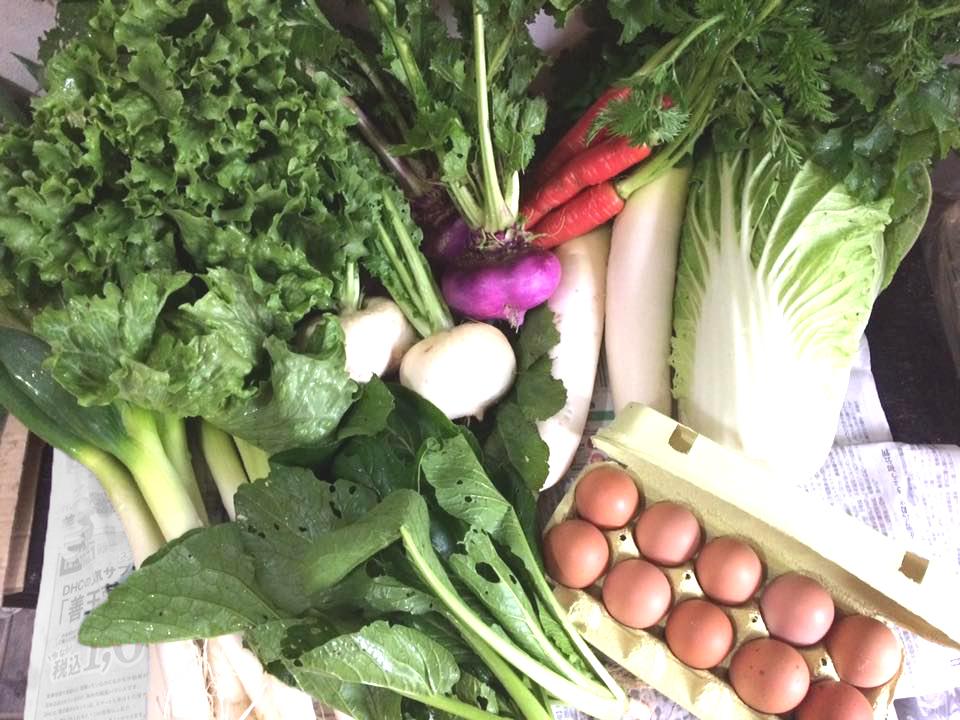 期間限定です!!麦畑自然農場の無農薬・冬野菜セット、お届けします♪