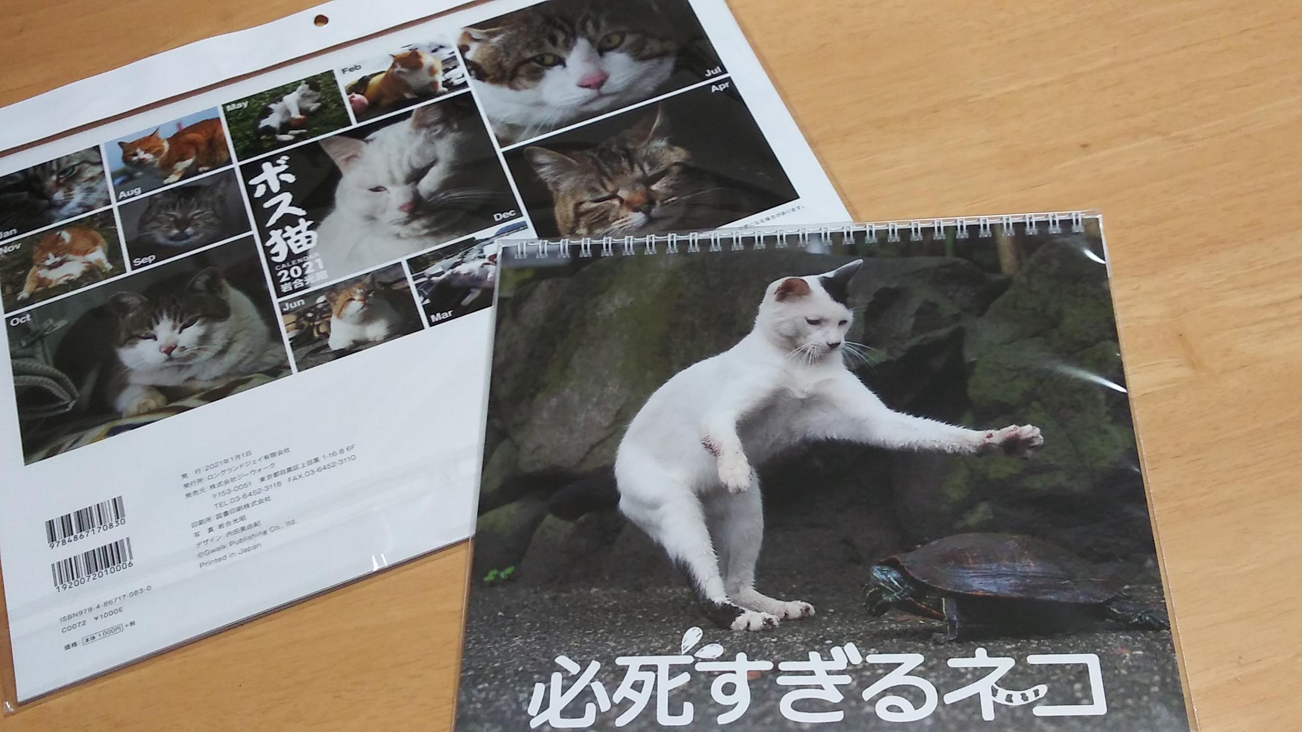 来年のカレンダーも猫