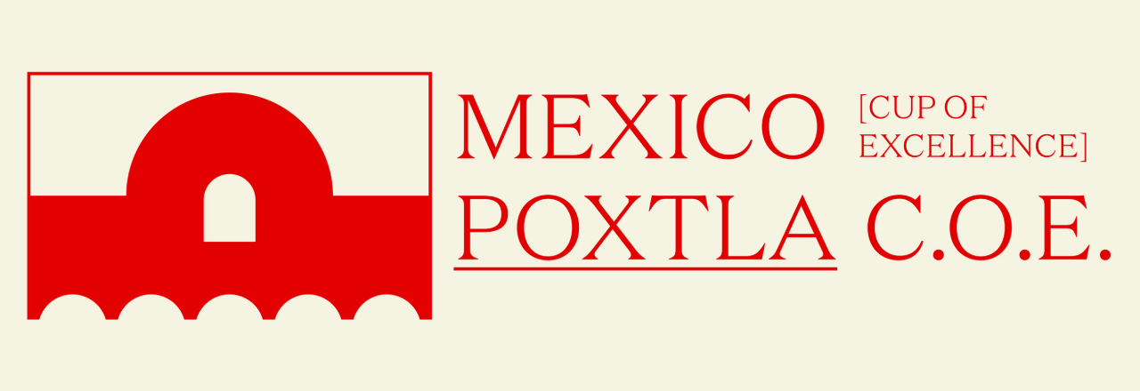 CUP OF EXCELLENCE MEXICO LOT #10 - POXTLA