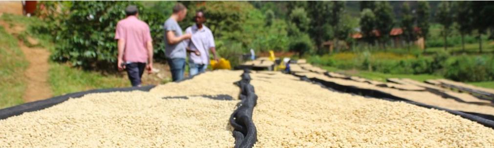 買付の旅 in ルワンダ