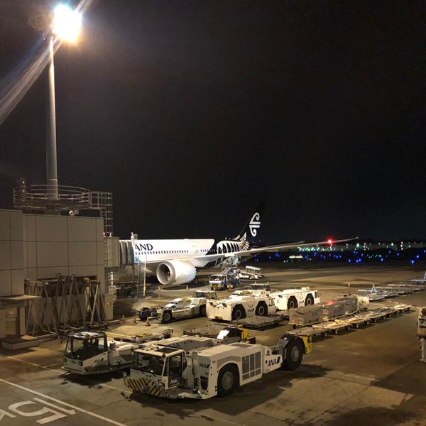 【NZ視察/2019年3月】日本出国〜NZネルソン到着まで