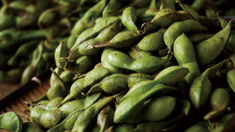 平成30年産「丹波篠山黒枝豆」先行予約開始。