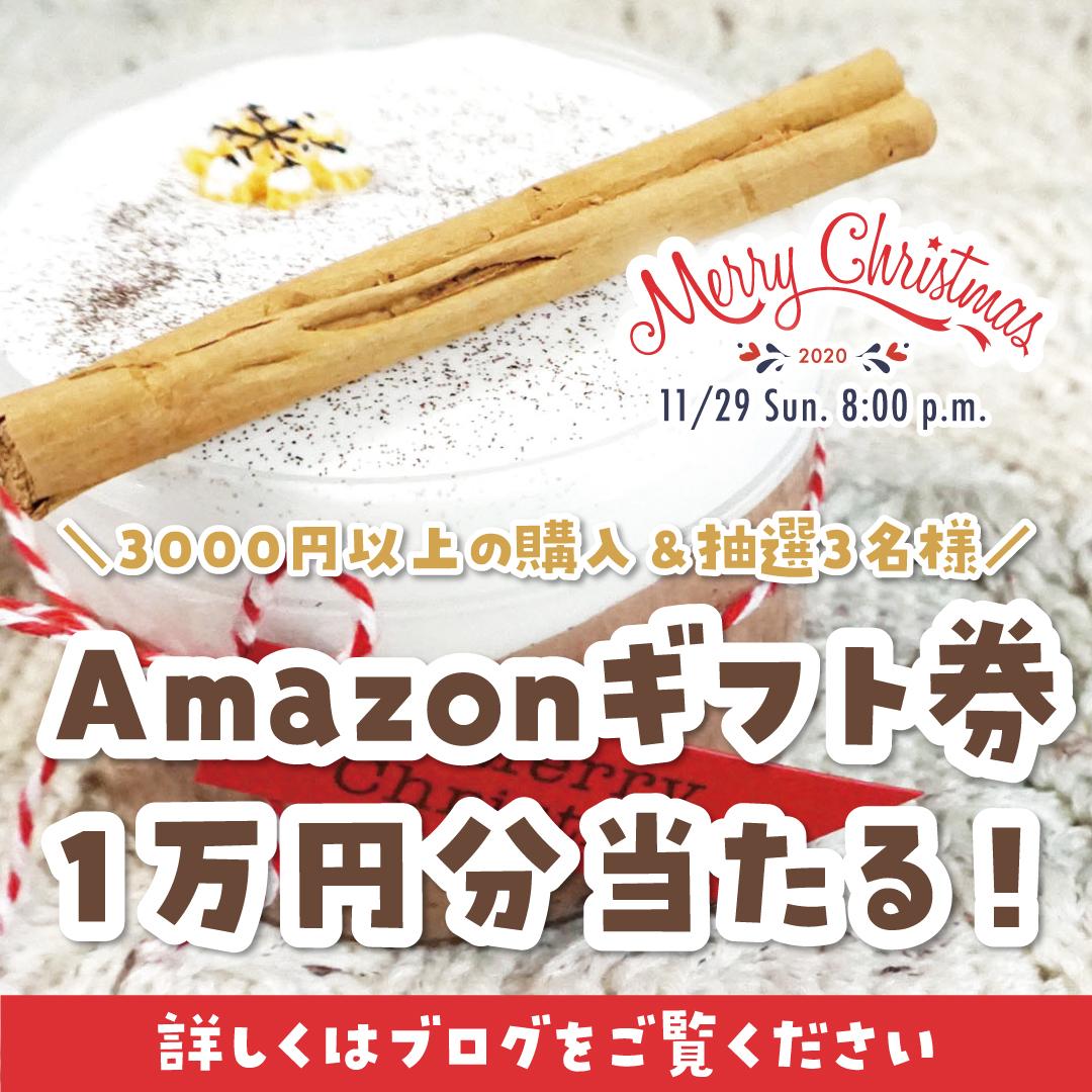 【Amazonギフト券1万円プレゼント】スライムジャパンからのX'masプレゼント企画!