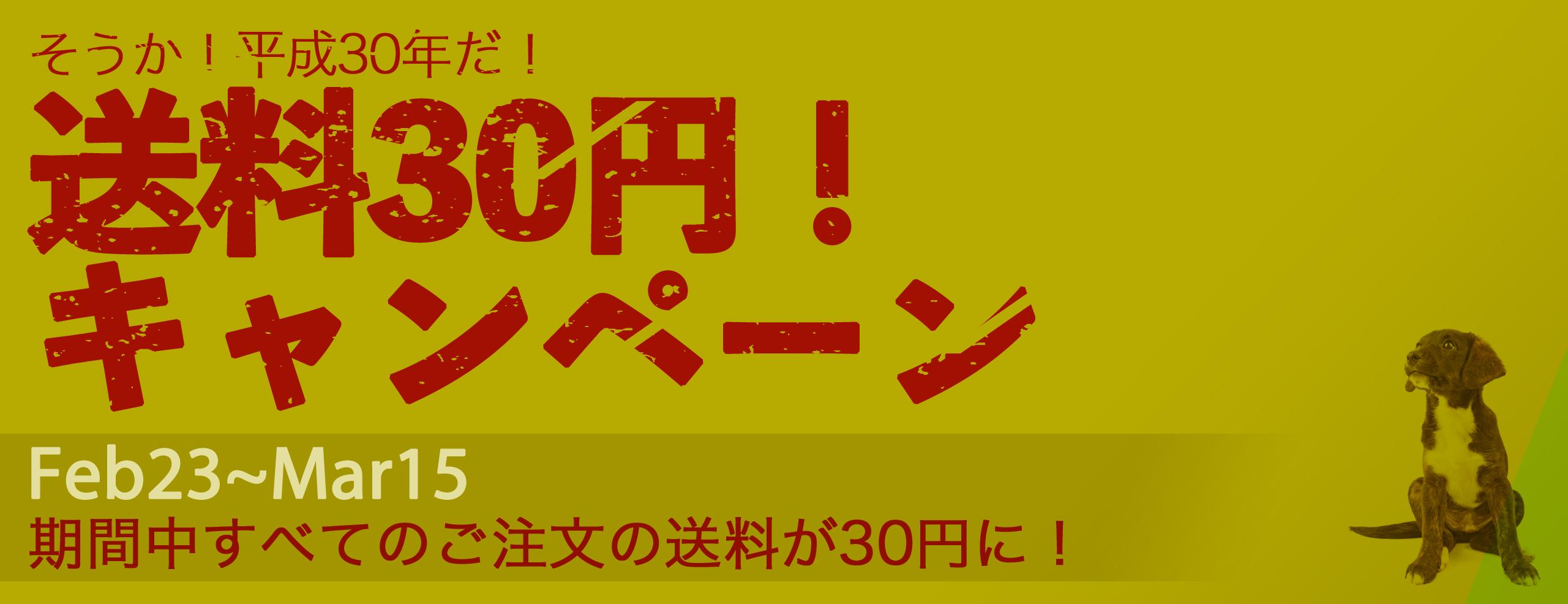 終了【2/23〜3/15】「そうか!平成30年だ!送料30円!」キャンペーン