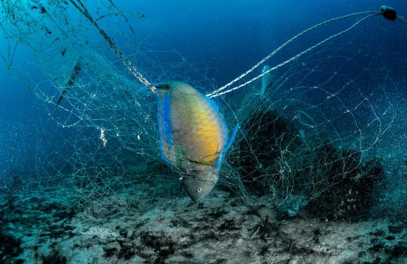 廃棄漁網回収と商品化協力について