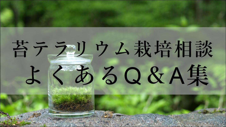 苔テラリウム栽培相談・よくある質問Q&A