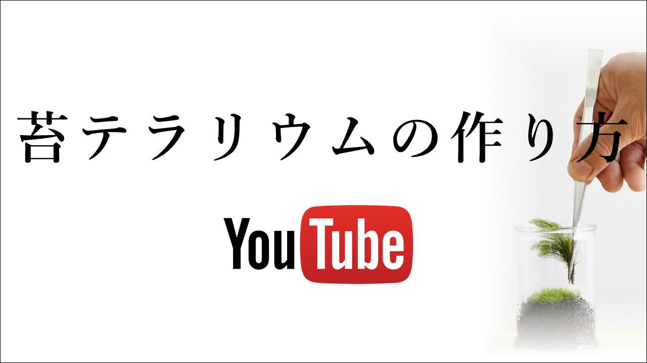 苔テラリウムの作り方YouTubeにて公開