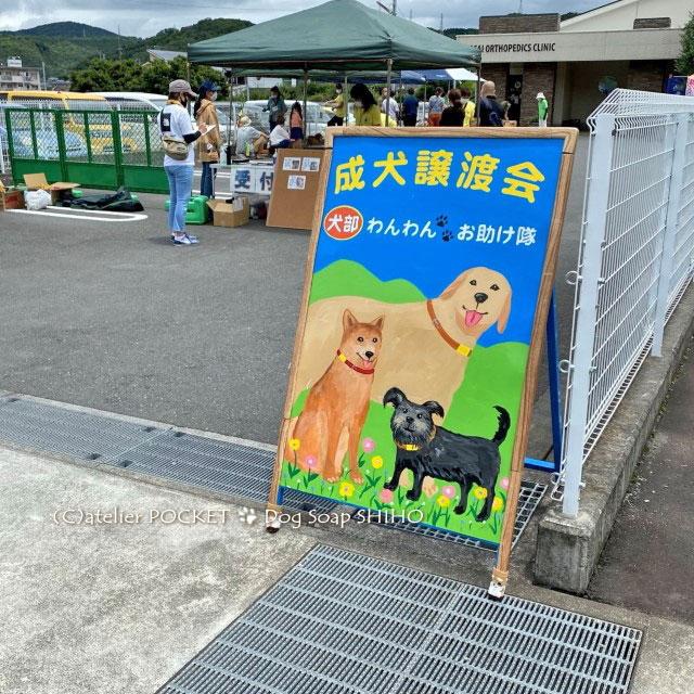 犬部わんわんお助け隊 保護犬の譲渡会に出店しました
