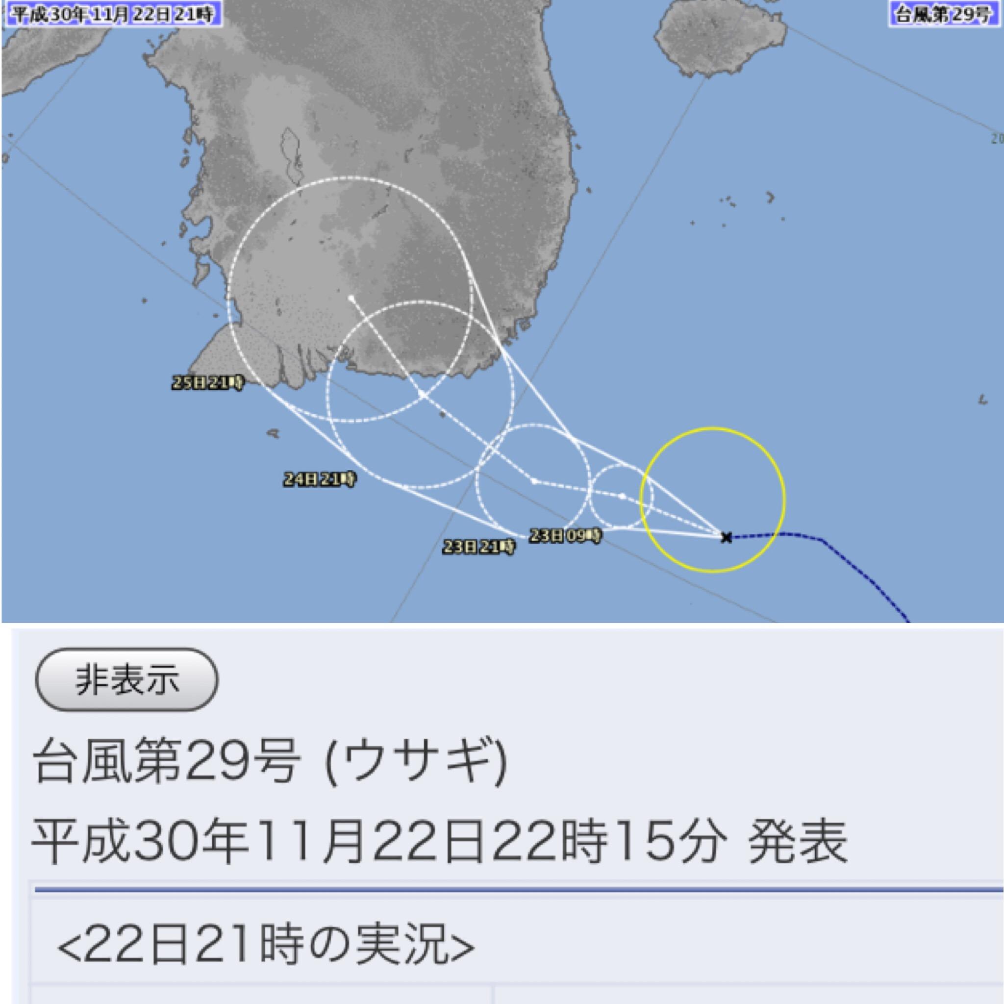 台風第29号 (ウサギ)