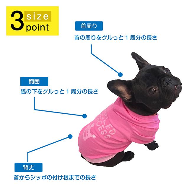 お洋服サイズの測り方 & モデル紹介