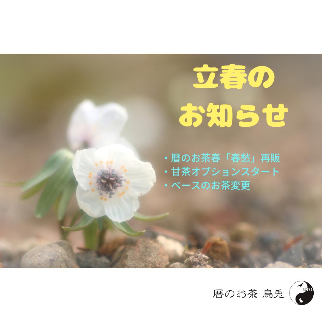立春のお知らせ