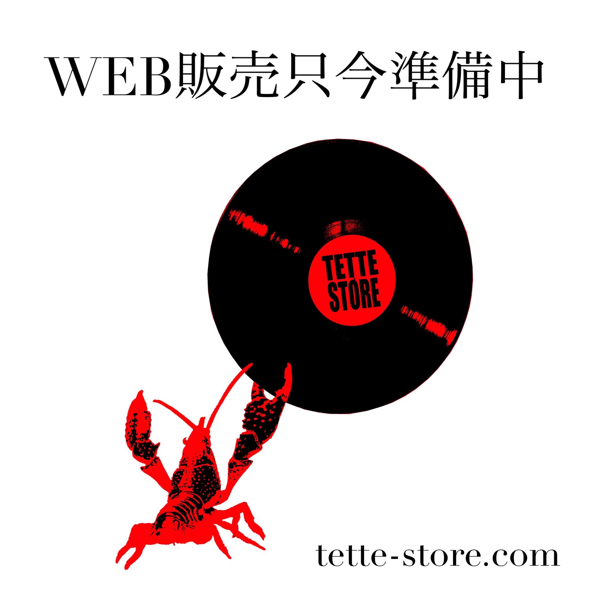 レコードバッグWEB販売します!