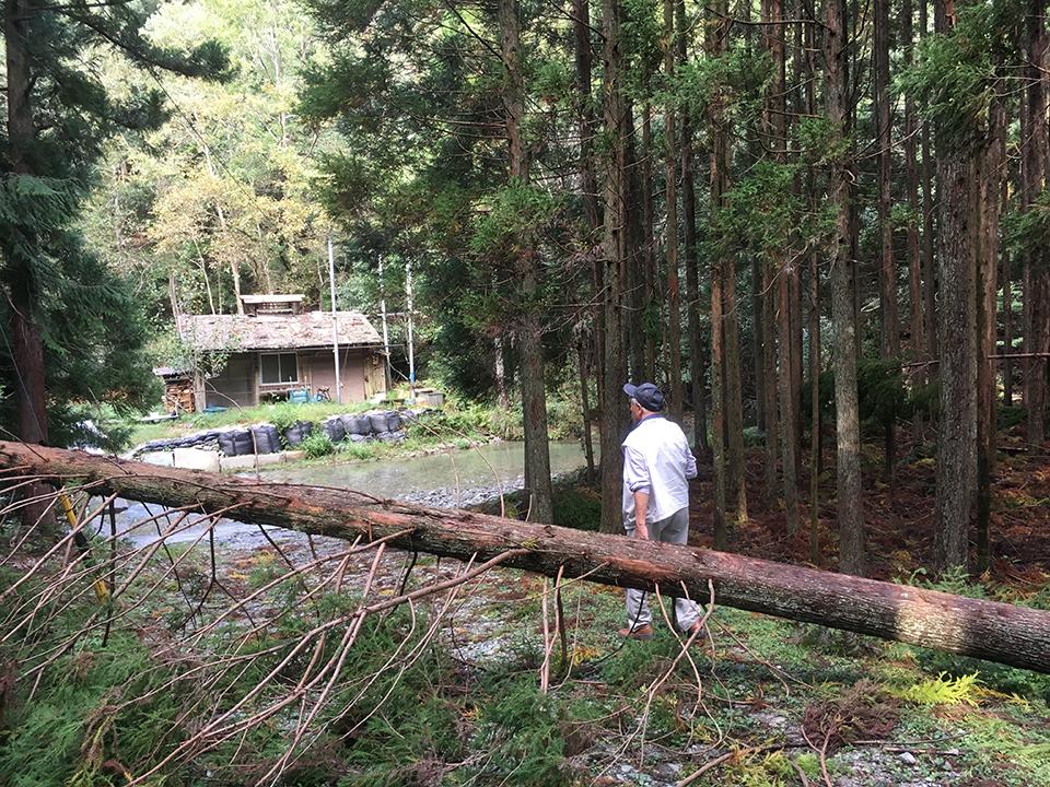 猟師小屋にも台風