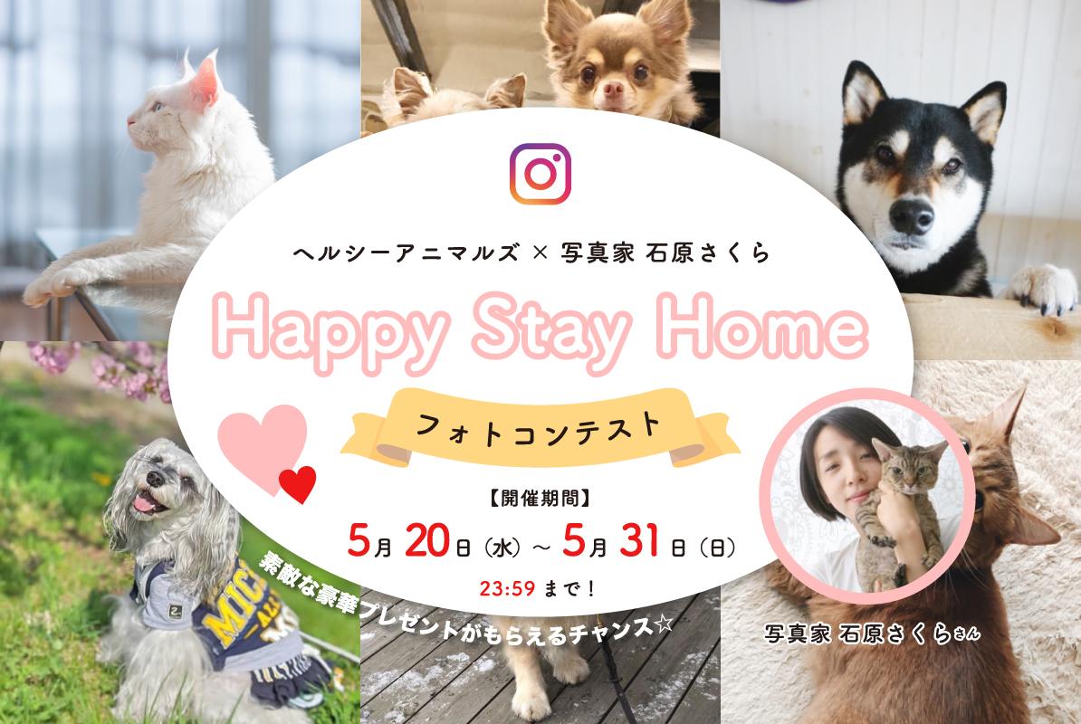 2020/5/20〜5/31まで『Happy Stay Homeフォトコンテスト』を開催します