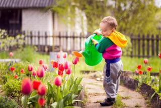 お花も生き生き!