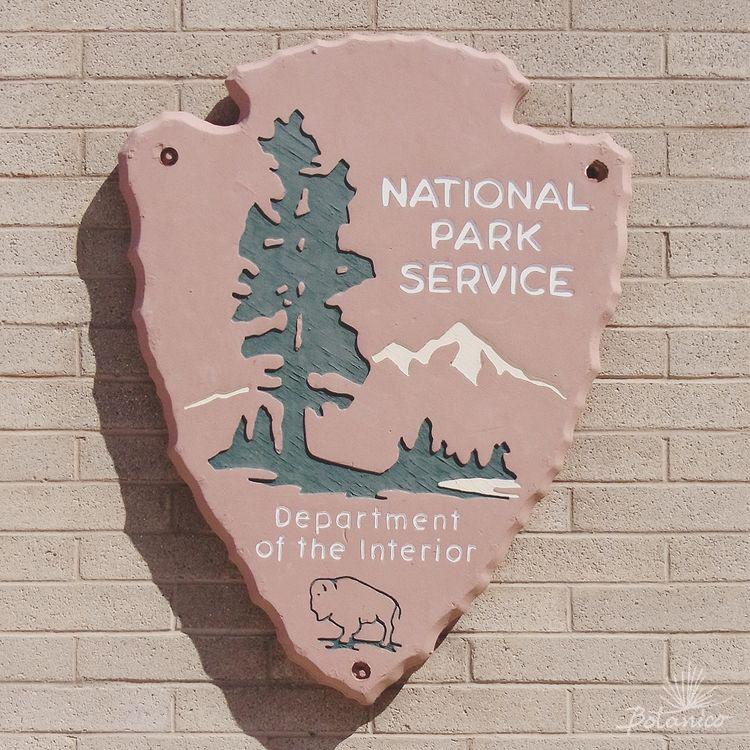 Off Shots! / 2. Joshua Tree National Park