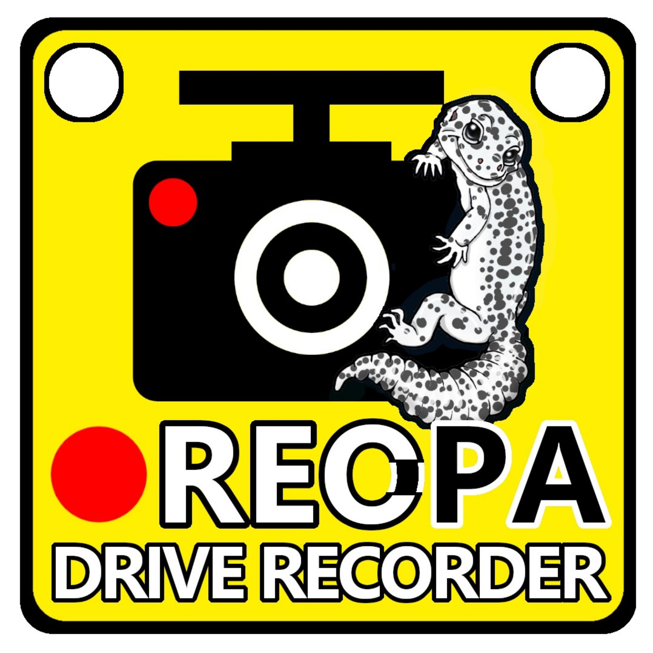 ドライブレコーダー&レオパ 爬虫類車用ステッカー
