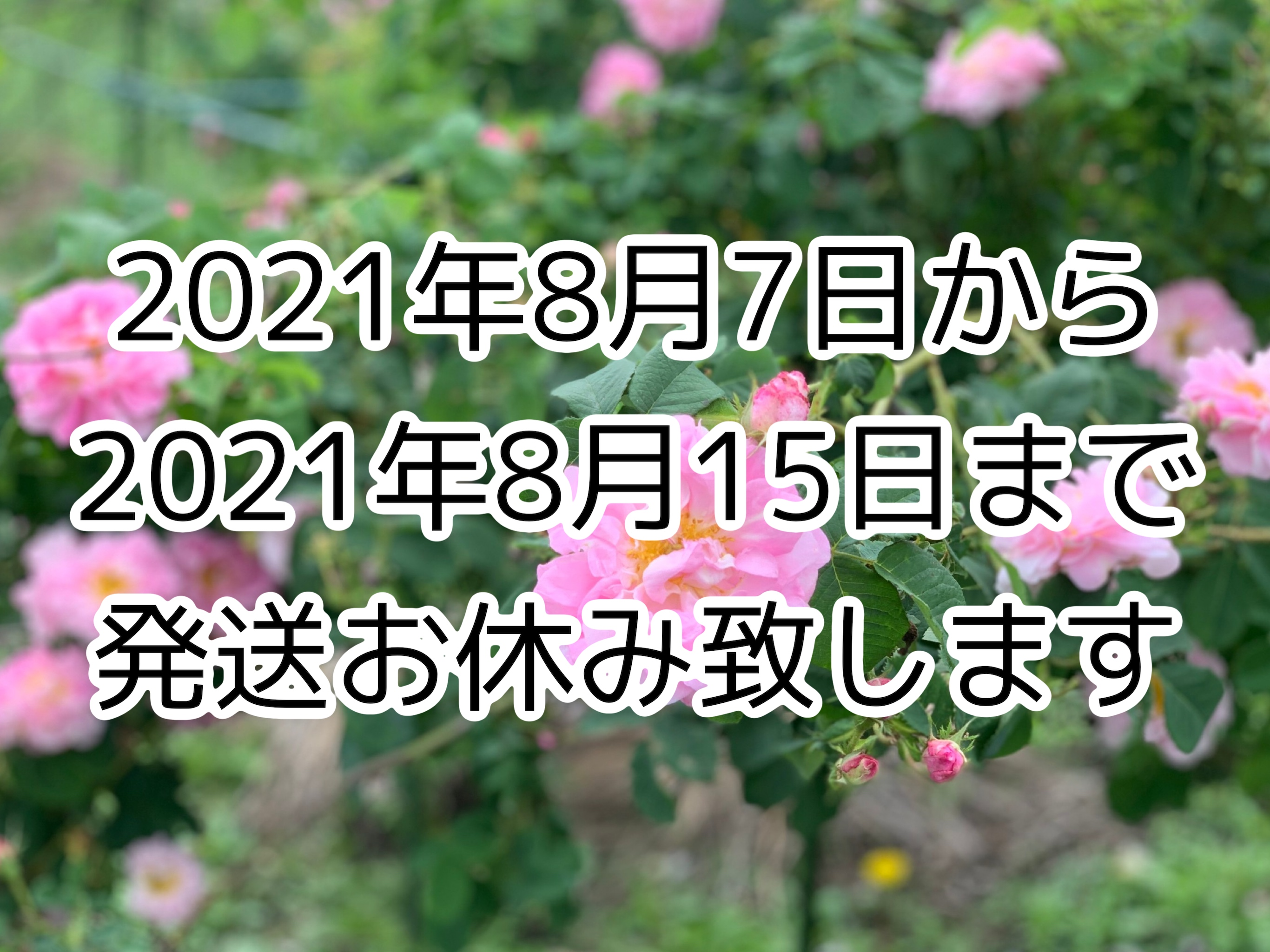 【休業のお知らせ】8/7〜8/15まで、休暇に伴い全ての発送がおやすみとなります