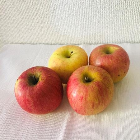 有機や無農薬りんごジュースをお探しなら「ピロール」もいかが?
