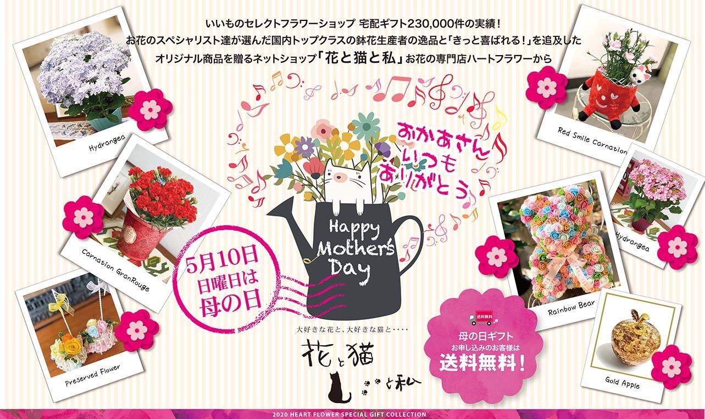 【母の日】お母さんにお花をプレゼントして「ありがとう」を伝えましょう!【送料無料】