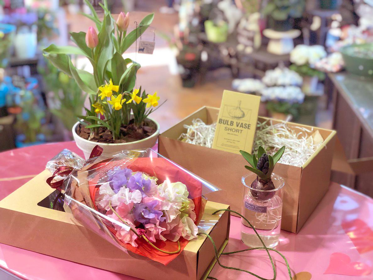 【新商品】一足早く春を先取り!季節のお花が新登場
