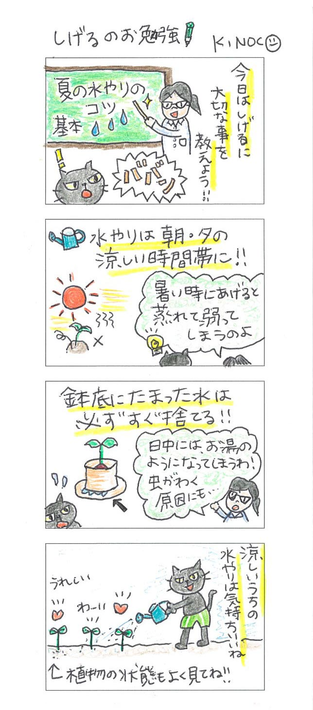 【連載】4コマ漫画第11話