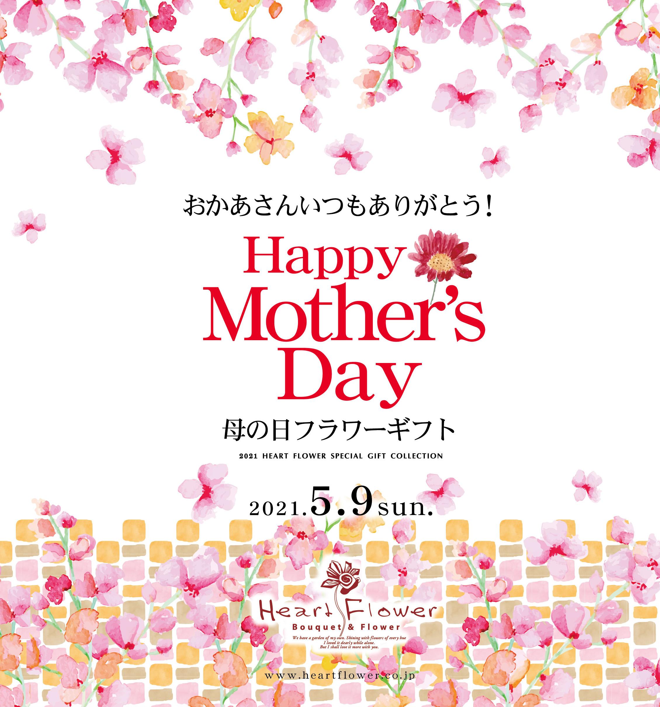 【送料無料】2021年母の日ギフト!カーネーション・あじさい・胡蝶蘭など各種ご予約受付中!
