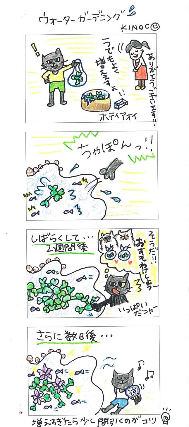 【連載】4コマ漫画第13話