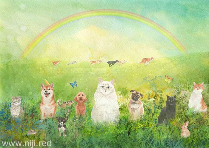 虹の詩を知っていますか