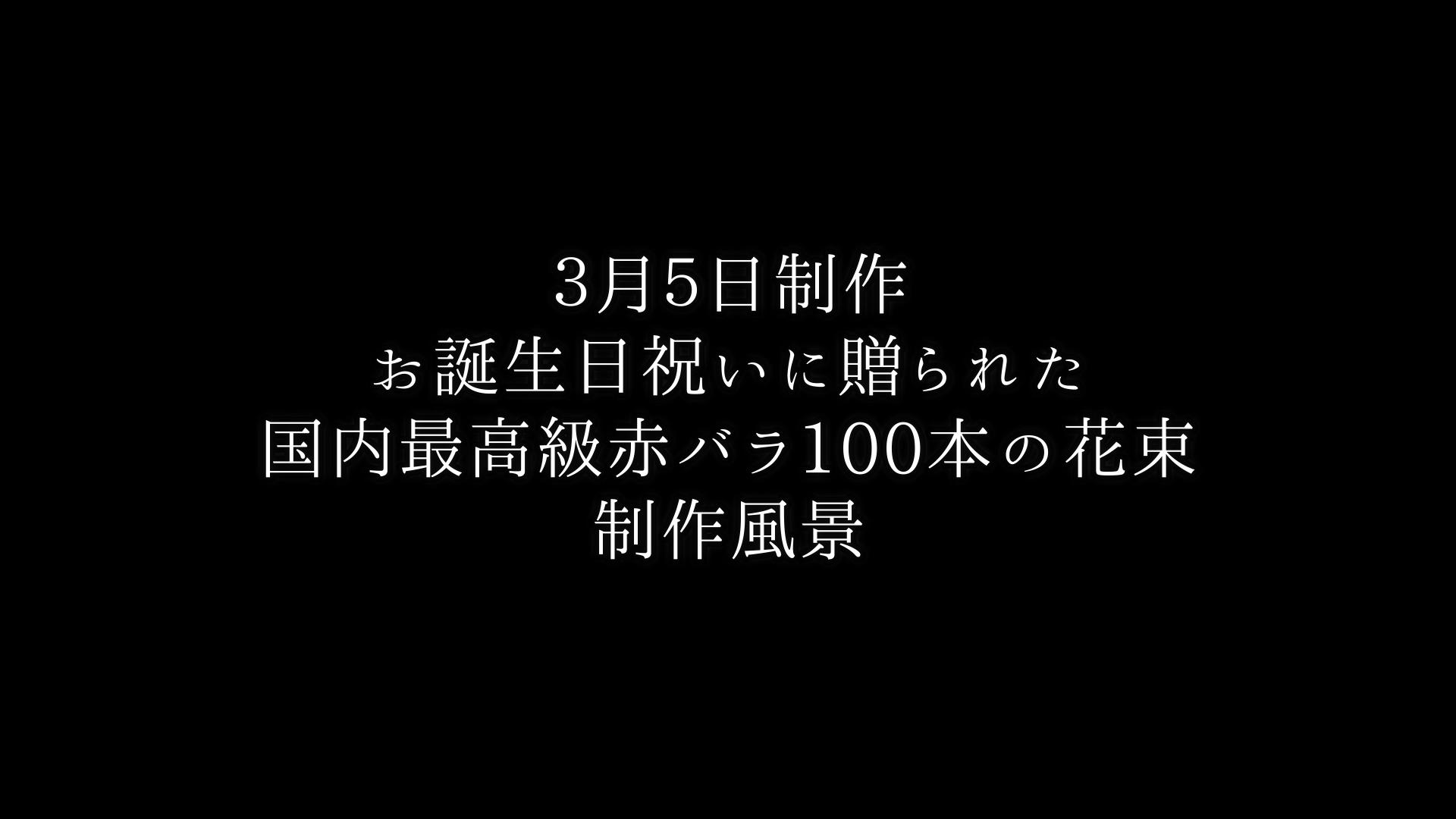 【お誕生日祝いに贈る】バラ100本の花束制作動画 2021/03/05撮影